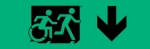 Accessible Exit Sign Project Running Man Wheelchair Wheelie Man Symbol Accessible Means of Egress Icon Exit Sign 37