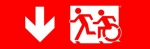 Accessible Exit Sign Project Running Man Wheelchair Wheelie Man Symbol Accessible Means of Egress Icon Exit Sign 66