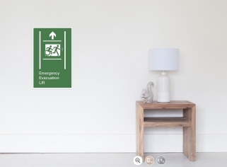 Accessible Exit Sign Project Wheelchair Wheelie Running Man Symbol Means of Egress Icon Disability Emergency Evacuation Fire Safety Lift Elevator Poster 13