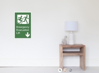 Accessible Exit Sign Project Wheelchair Wheelie Running Man Symbol Means of Egress Icon Disability Emergency Evacuation Fire Safety Lift Elevator Poster 8