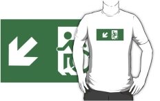 Accessible Exit Sign Project Wheelchair Wheelie Running Man Symbol Means of Egress Icon Disability Emergency Evacuation Fire Safety Adult t-shirt 110
