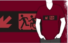 Accessible Exit Sign Project Wheelchair Wheelie Running Man Symbol Means of Egress Icon Disability Emergency Evacuation Fire Safety Adult T-shirt 177