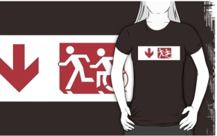Accessible Exit Sign Project Wheelchair Wheelie Running Man Symbol Means of Egress Icon Disability Emergency Evacuation Fire Safety Adult T-shirt 238