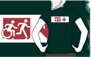 Accessible Exit Sign Project Wheelchair Wheelie Running Man Symbol Means of Egress Icon Disability Emergency Evacuation Fire Safety Adult T-shirt 275