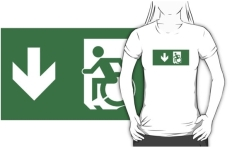 Accessible Exit Sign Project Wheelchair Wheelie Running Man Symbol Means of Egress Icon Disability Emergency Evacuation Fire Safety Adult t-shirt 74