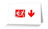 Accessible Exit Sign Project Wheelchair Wheelie Running Man Symbol Means of Egress Icon Disability Emergency Evacuation Fire Safety Greeting Card 100