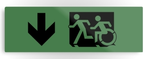 Accessible Exit Sign Project Wheelchair Wheelie Running Man Symbol Means of Egress Icon Disability Emergency Evacuation Fire Safety Metal Printed 110