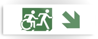 Accessible Exit Sign Project Wheelchair Wheelie Running Man Symbol Means of Egress Icon Disability Emergency Evacuation Fire Safety Metal Printed 88