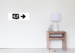 Accessible Exit Sign Project Wheelchair Wheelie Running Man Symbol Means of Egress Icon Disability Emergency Evacuation Fire Safety Poster 126