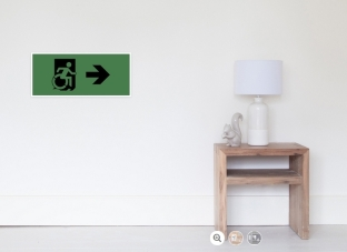 Accessible Exit Sign Project Wheelchair Wheelie Running Man Symbol Means of Egress Icon Disability Emergency Evacuation Fire Safety Poster 14