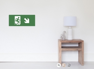 Accessible Exit Sign Project Wheelchair Wheelie Running Man Symbol Means of Egress Icon Disability Emergency Evacuation Fire Safety Poster 61
