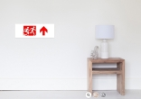 Accessible Exit Sign Project Wheelchair Wheelie Running Man Symbol Means of Egress Icon Disability Emergency Evacuation Fire Safety Poster 65
