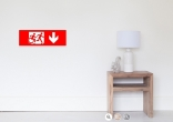 Accessible Exit Sign Project Wheelchair Wheelie Running Man Symbol Means of Egress Icon Disability Emergency Evacuation Fire Safety Poster 79