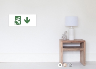 Accessible Exit Sign Project Wheelchair Wheelie Running Man Symbol Means of Egress Icon Disability Emergency Evacuation Fire Safety Poster 89