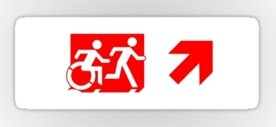 Accessible Exit Sign Project Wheelchair Wheelie Running Man Symbol Means of Egress Icon Disability Emergency Evacuation Fire Safety Sticker 112
