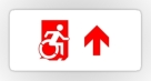 Accessible Exit Sign Project Wheelchair Wheelie Running Man Symbol Means of Egress Icon Disability Emergency Evacuation Fire Safety Sticker 55
