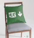 Accessible Exit Sign Project Wheelchair Wheelie Running Man Symbol Means of Egress Icon Disability Emergency Evacuation Fire Safety Throw Pillow Cushion 100