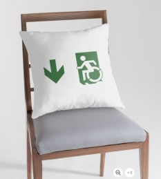 Accessible Exit Sign Project Wheelchair Wheelie Running Man Symbol Means of Egress Icon Disability Emergency Evacuation Fire Safety Throw Pillow Cushion 105
