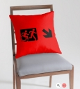 Accessible Exit Sign Project Wheelchair Wheelie Running Man Symbol Means of Egress Icon Disability Emergency Evacuation Fire Safety Throw Pillow Cushion 13