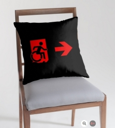 Accessible Exit Sign Project Wheelchair Wheelie Running Man Symbol Means of Egress Icon Disability Emergency Evacuation Fire Safety Throw Pillow Cushion 132