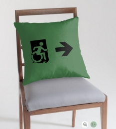 Accessible Exit Sign Project Wheelchair Wheelie Running Man Symbol Means of Egress Icon Disability Emergency Evacuation Fire Safety Throw Pillow Cushion 14