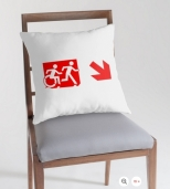 Accessible Exit Sign Project Wheelchair Wheelie Running Man Symbol Means of Egress Icon Disability Emergency Evacuation Fire Safety Throw Pillow Cushion 148