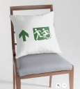 Accessible Exit Sign Project Wheelchair Wheelie Running Man Symbol Means of Egress Icon Disability Emergency Evacuation Fire Safety Throw Pillow Cushion 18