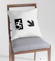 Accessible Exit Sign Project Wheelchair Wheelie Running Man Symbol Means of Egress Icon Disability Emergency Evacuation Fire Safety Throw Pillow Cushion 69