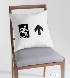 Accessible Exit Sign Project Wheelchair Wheelie Running Man Symbol Means of Egress Icon Disability Emergency Evacuation Fire Safety Throw Pillow Cushion 75